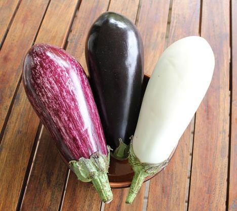aubergine-varianten