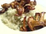 risotto med persilja och kantareller